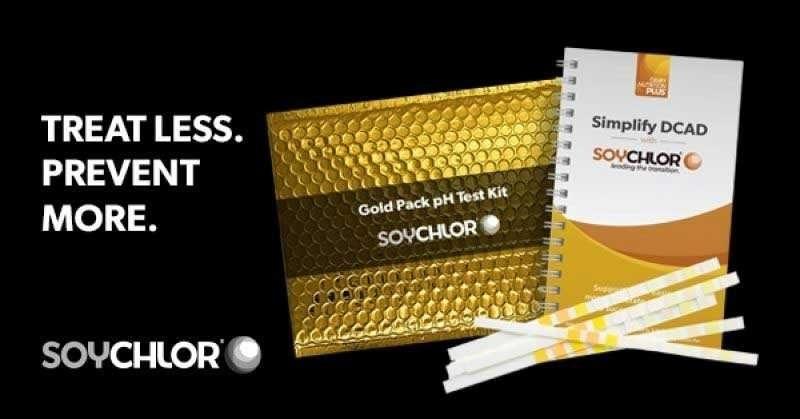 4899 Dnp Goldpack 600X314 2 Retargeting
